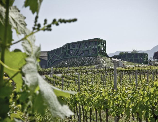 Винодельня Tramin. Архитектор Вернер Чолль © Rickard Kust