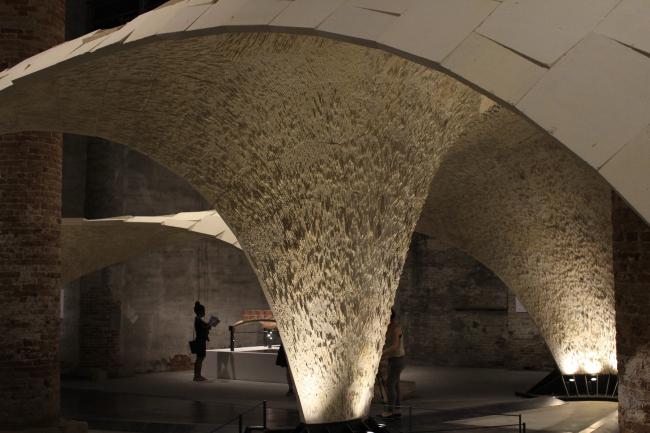 Биеннале 2016, экспозиция Аравены: проект BRG ETH, ODB и EG. Фотография © Юлия Тарабарина, Архи.ру