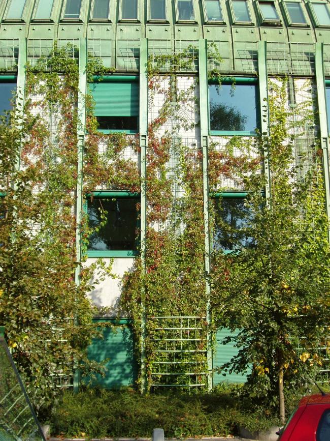"""Библиотека Варшавского университета. Факультет Права и Администрации. Постройка, 2000. Фотография © Архитектурная мастерская """"Budzynski & Badowski"""""""