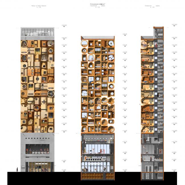 Кондомини(м)ум. Дипломный проект Стаса Козина. Студия архитектурного бюро «Меганом». Разрез. МАРХИ, 2016