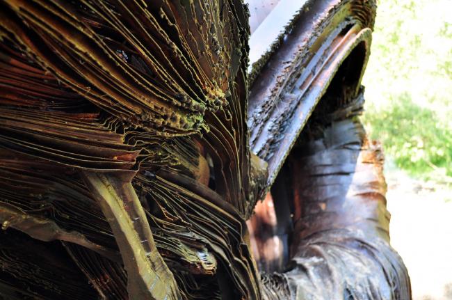 Личная вселенная № 5. Дмитрий Жуков. Архстояние 2016. Фотография © Вячеслав Заикин