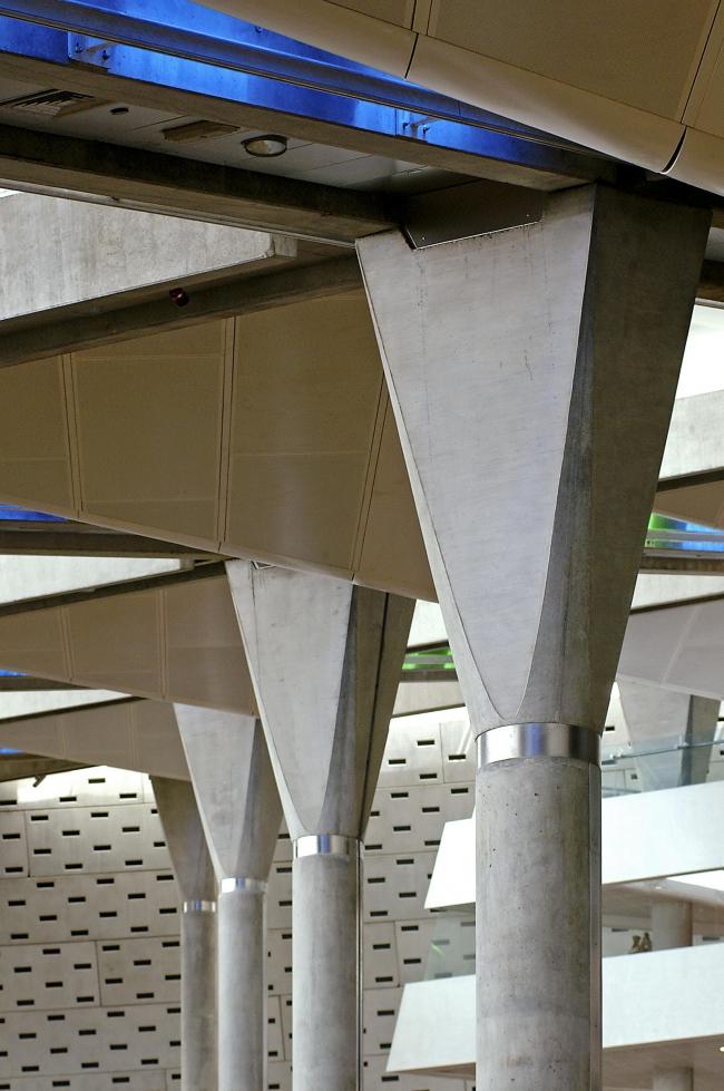 Александрийская библиотека ©  Nils Petter Dale