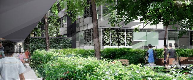 Жилой комплекс Duxton Plain в Сингапуре, конкурсный проект © WOHA