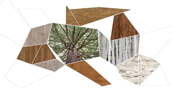 Hpl-панели – это имитация поверхности натурального дерева. Фото предоставлено компанией «Декотек Инжиниринг»