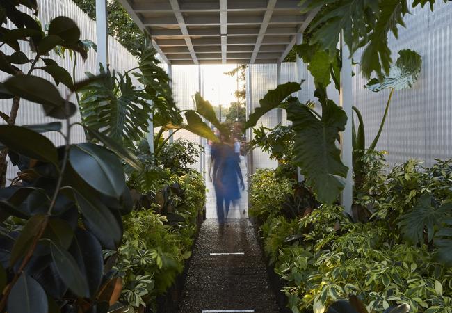Инсталляция Асифа Хана MINI LIVING – Forests. Фотография предоставлена BMW Group