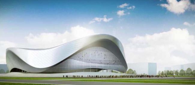 Архитектурно-планировочная концепция проекта «Новосибирск-Арена». Арена. Проект, 2016 © Проектный институт «Арена»