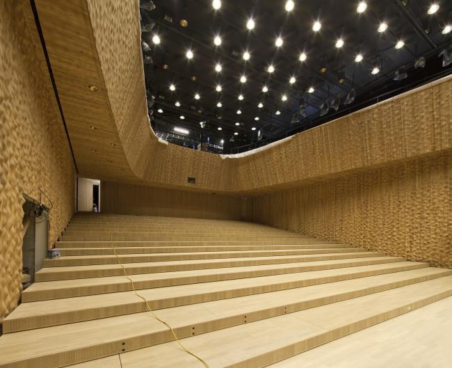 Здание Гамбургской филармонии Elbphilarmonie. Концертный зал. Фото © Oliver Heissner