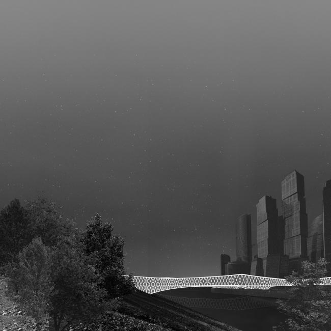 Парк в Империи. Ночной вид. Дипломный проект Дарьи Носовой. Руководители: Александр Цимайло и Николай Ляшенко. 15 группа. МАРХИ, 2016