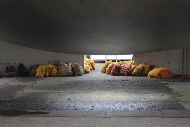 «Тиляпия». Кацухито Нисикава. Мешки с овощами для резидентов – литераторов и художников © Елизавета Клепанова