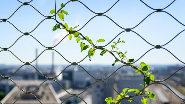 M6B2 Башня биоразнообразия © Pierre L′Excellent