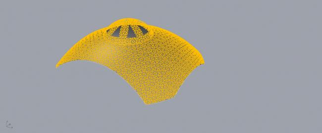 Oрнамент, разработанный специалистами компании Каlzip. Изображение: Kalzip