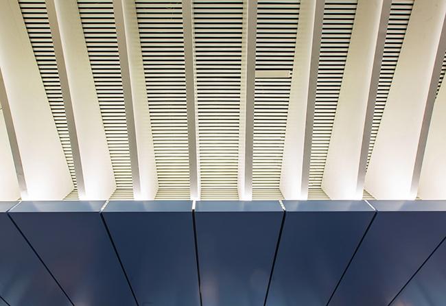 Потолочная система ТПУ «Деловой центр». Фотография предоставлена компанией «АСП-Технолоджи»