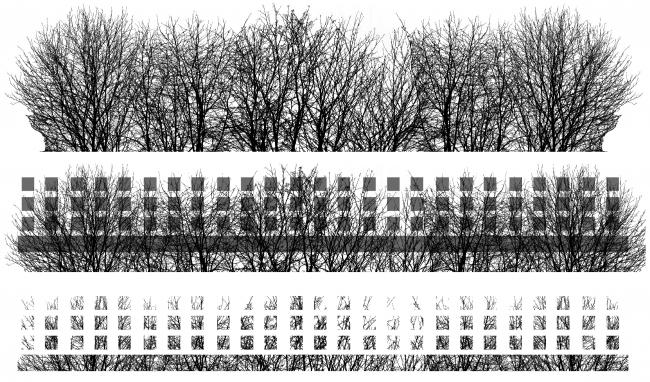 Жилой комплекс и офис на Пречистенской набережной. Графическое изображение деревьев для принта на стекле. Проект, 2005 © АБ Остоженка