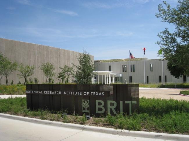 Техасский институт ботанических исследований. Фото: MauriceJFox3 via Wikimedia Commons. Лицензия CC-BY-SA-3.0
