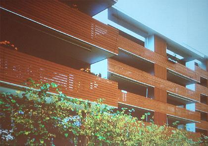 Реконструкция здания 1960-х. Пристроены новые большие галереи, облицованныве деревом