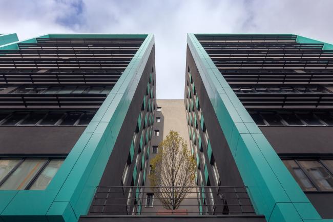 Офисный комплекс «Оптима Плаза». Деревья на террасах между ризалитами © Архиматика