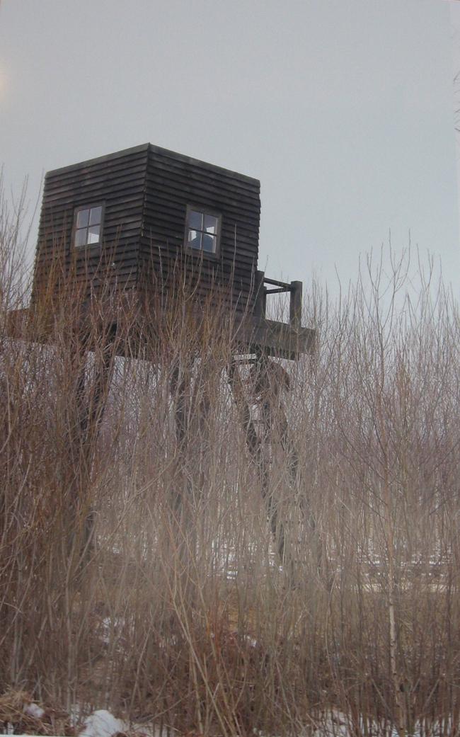 Звание «Лауреата». «Дом над лесом». Анна Щетинина. Архитектурное бюро «Терра»