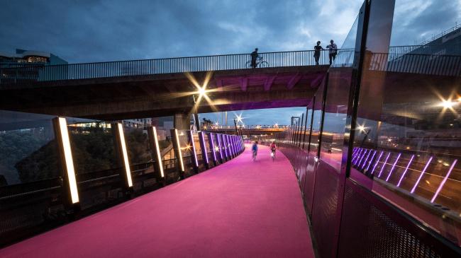 Веломаршрут #LightPathAKL (Окленд, Новая Зеландия). Monk Mackenzie Architects + LandLab. Изображение предоставлено WAF