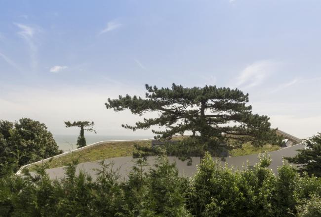Дом Ness Point, Кент.  Tonkin Liu. Фото © Greg Storrar