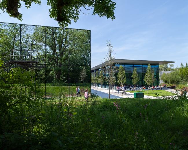 Расширение кампуса компании Dyson, Уилтшир ©   WilkinsonEyre