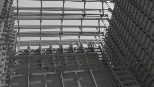 Курсовой проект Тирайра Мелконяна. «Чувство дерева». Студия Николая Белоусова. МАРШ, 2017