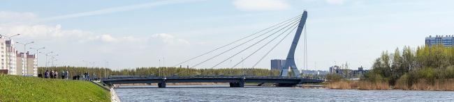 Мост Ахмата Кадырова. Фото: Birulik via Wikimedia Commons. Лицензия CC BY-SA 4.0