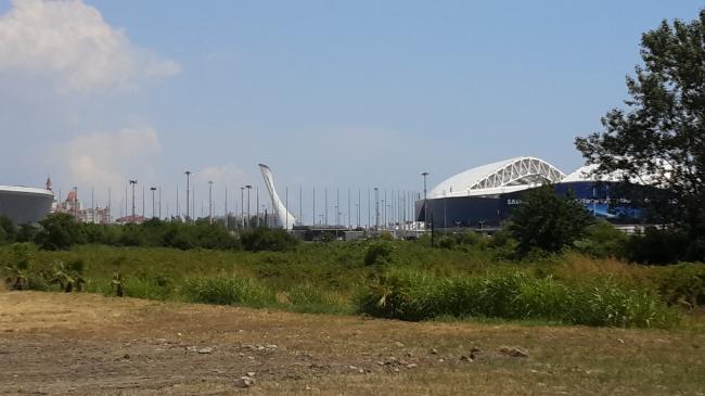 Территория, прилегающая к Олимпийскому парку с северной стороны, частично отдана под орнитологический парк. Фотография: Мария Трошина