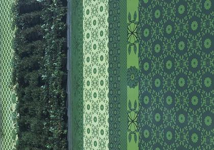 Green green screen, Токио