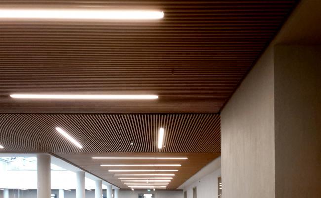 Акустические потолки. Хорошевская гимназия, А-Проект. Фотография © Мария Трошина