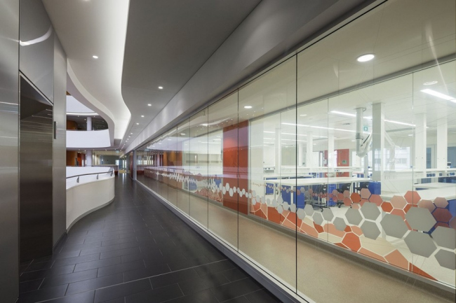 Графика на стеклянных перегородках лабораторий. Фотография © Патрик Рейнольдс