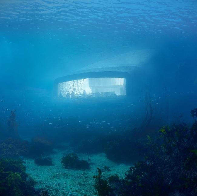 Подводный ресторан Under © MIR и Snøhetta