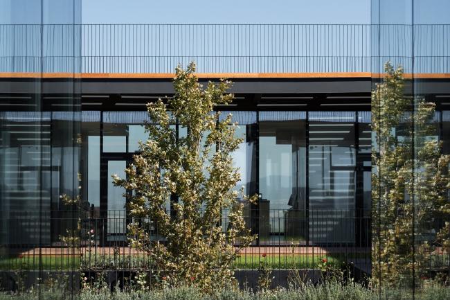 Винодельня в Гай-Кодзоре. Реализация, 2013-2017, Kleinewelt Architekten. Фотография © Илья Иванов