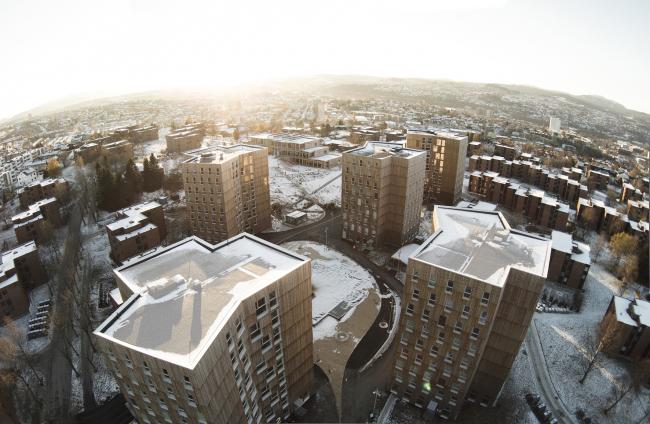 Студенческое общежитие Moholt 50|50 © Tomas Bekkavik