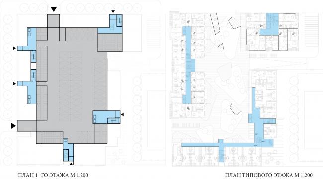 Центральная модель застройки. План первого и типового этажа © Pole Design