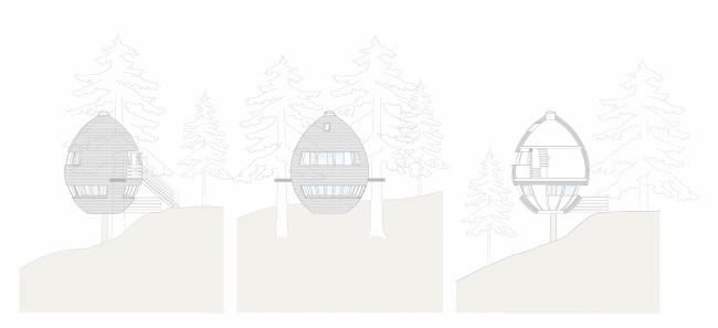Дома на деревьях Pigna © Architetto Beltrame Claudio