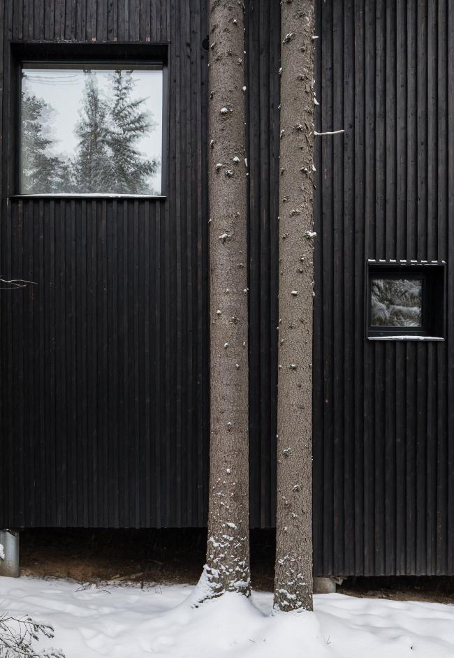 Дом для двух художников. Фотография © Дмитрий Цыренщиков