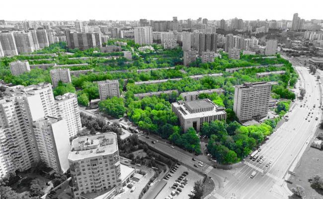 "The renovation platform ""Vernadskogo Avenue"". The current state of greenery © Ostozhenka"