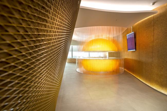 Аэропорт «Платов», Ростов-на-Дону © VOX Architects