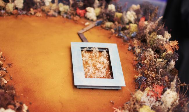Ландшафтные сады, Германия, проект. Модель-штудия 2018. Песок, красящий пигмент, сухие растения. Биеннале архитектуры Freespace, выставка Петера Цумтора; коллекция музея Брегенца. Фотография: Ю.Тарабарина, Архи.ру