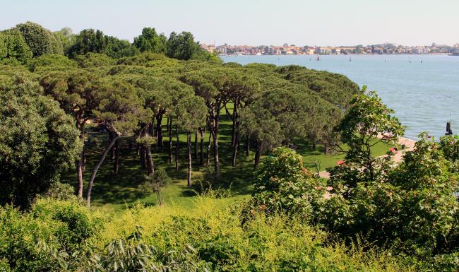 Вид на лагуну с площадки павильона Великобритании. Фотография: Ю.Тарабарина, Архи.ру