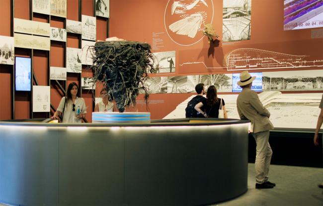 Павильон России, Венеция, биеннале архитектуры. Фотография Архи.ру