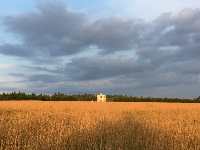 Вид на поле с Ротондой Александра Бродского. Архстояние 2018. Фотография Архи.ру