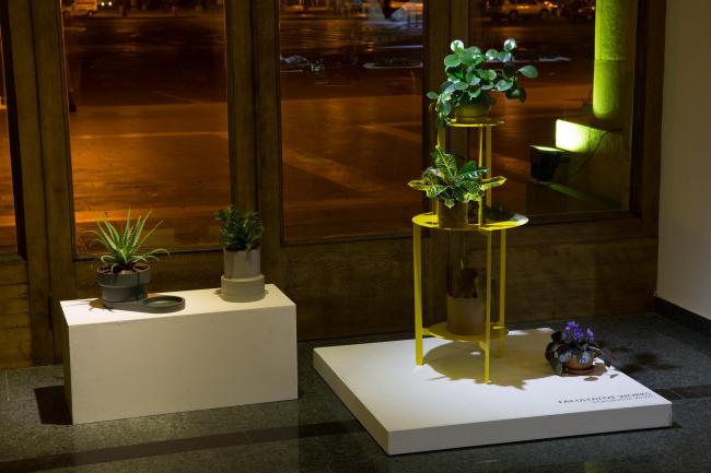 Работы студии Facultative works. Фото предоставлено Nerka Design Project
