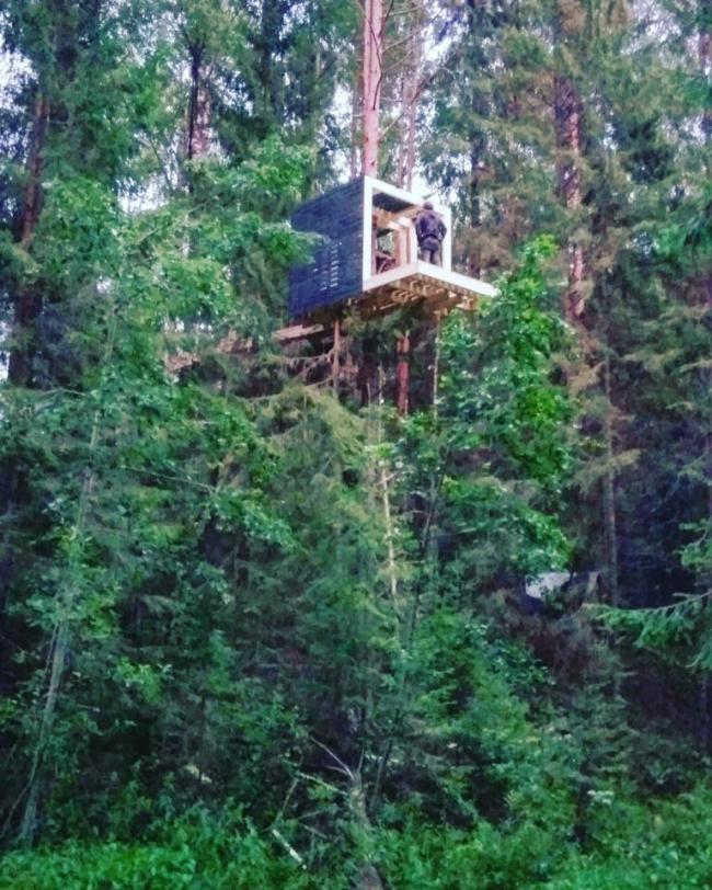 «Лесом» / команда САЗОНЫЧ