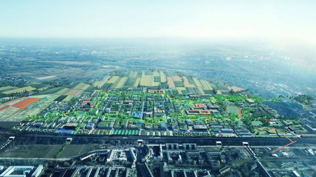 Сады на крыше нового района в Гамбурге. Фотография © ADEPT, KARRES+BRANDS, Doug & Wolf