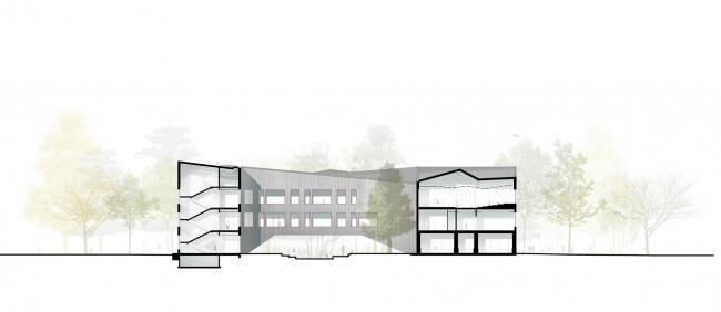 Гимназия А+, проект. Разрез поперечный © Архиматика