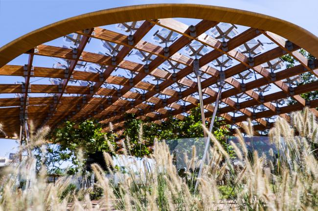 Павильон «Живой сад». Фотография © Zhou Dongdong