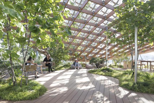 Павильон «Живой сад». Фотография © Tian Fangfang