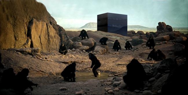 «Черная вилла» – дом для коллекционера искусства. Изображение © Jan Skuratowski Architektur