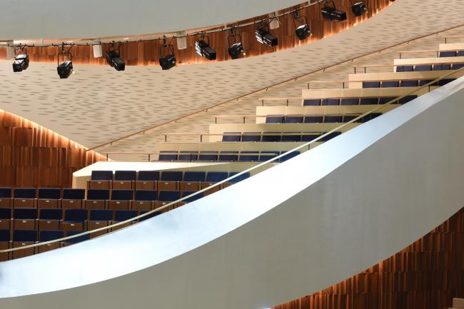 Zaryadye Concert Hall. Photograph © Ilia Ivanov